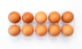在塑料包裹的鸡鸡蛋在白色 免版税库存图片