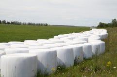 在塑料干草包裹的大包 免版税库存图片