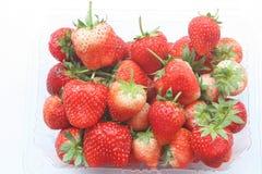 在塑料的新鲜的红色草莓包装 免版税库存照片
