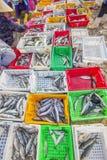 在塑料盘子的鲜鱼在长的海氏鱼市附近的海滩 库存图片