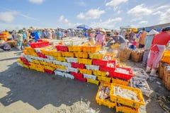 在塑料盘子的鲜鱼在长的海氏鱼市附近的海滩 免版税库存照片