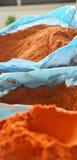 在塑料袋的红色辣椒粉香料 免版税库存照片