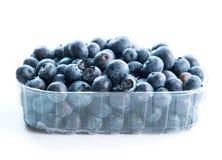 在塑料组装的蓝莓 库存照片