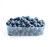 在塑料组装的蓝莓 免版税库存照片