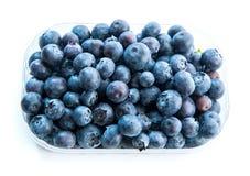 在塑料组装的蓝莓 免版税库存图片