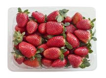 在塑胶容器的新鲜的草莓 免版税图库摄影
