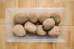 在塑胶容器的未加工的土豆在地板上 免版税库存图片