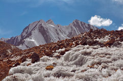 在塔吉克斯坦的冰晶 免版税图库摄影