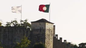 在塔安置的旗子在植物之间 影视素材