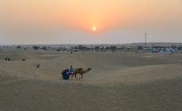 在塔尔沙漠的乘坐的骆驼在贾沙梅尔,印度 图库摄影