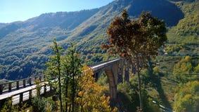 在塔拉河的桥梁在黑山在明亮的秋天 库存照片