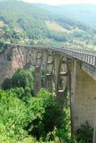 在塔拉河的桥梁 图库摄影