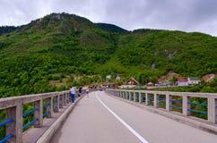 在塔拉河,黑山峡谷的Djurdjevic桥梁  免版税库存照片
