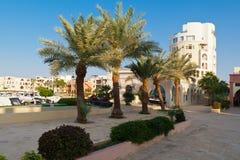 在塔拉海湾的早晨 亚喀巴,乔丹 免版税库存图片