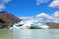 在塔斯曼冰川的冰山 库存图片