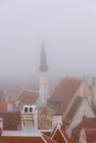 在塔林屋顶的看法从监视的 免版税库存图片