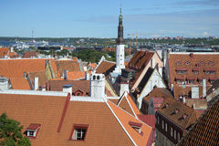 在塔林屋顶的晴朗的夏日  爱沙尼亚 免版税图库摄影