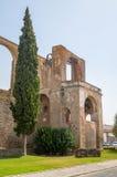 在塞尔帕,葡萄牙城堡的磨房  图库摄影