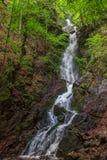 在塞尔维亚的山的高瀑布 免版税库存图片