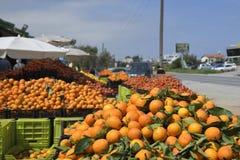 在塞浦路斯的北部的水果市场用新的被收获的柠檬 免版税库存照片