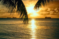 在塞班岛海岛上的值得买  免版税图库摄影