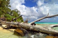 在塞班岛海岛上的美好的假日  塞班岛美丽的海岛  免版税库存照片