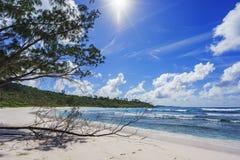 在塞舌尔群岛的天堂海滩, anse椰树, la digue 2 免版税库存图片