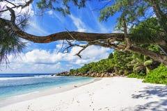 在塞舌尔群岛的天堂海滩, anse椰树, la digue 3 图库摄影