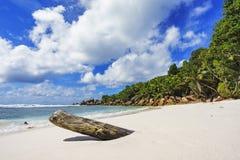 在塞舌尔群岛的天堂海滩, anse椰树, la digue 6 库存照片