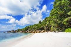 在塞舌尔群岛的天堂海滩, anse椰树, la digue 8 库存图片