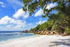 在塞舌尔群岛的天堂海滩, anse椰树, la digue 16 图库摄影