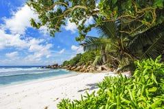 在塞舌尔群岛的天堂海滩, anse椰树, la digue 20 免版税库存照片