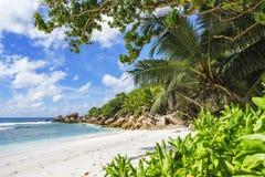 在塞舌尔群岛的天堂海滩, anse椰树, la digue 21 免版税库存图片