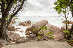 在塞舌尔群岛的热带海滩-自然背景 免版税库存照片