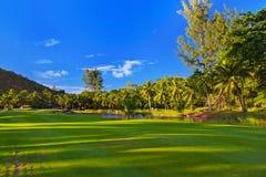 在塞舌尔群岛的高尔夫球领域 库存照片