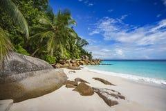 在塞舌尔群岛6的天堂海滩 免版税图库摄影