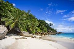 在塞舌尔群岛9的天堂海滩 库存照片