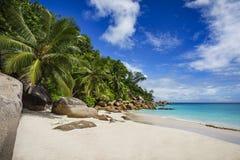 在塞舌尔群岛10的天堂海滩 免版税库存照片