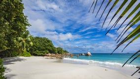 在塞舌尔群岛18的天堂海滩 免版税库存图片