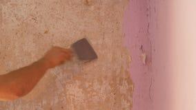 在墙壁上的剥落桃红色墙纸,家庭修理 剥与特别小铲的人老墙纸 股票录像