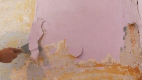 在墙壁上的剥落桃红色墙纸,家庭修理 剥与特别小铲的人老墙纸 影视素材