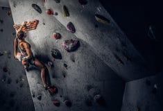 在墙壁上的年轻女人佩带的运动服实践的攀岩户内 免版税库存照片