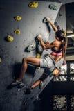 在墙壁上的年轻女人佩带的运动服实践的攀岩户内 库存照片