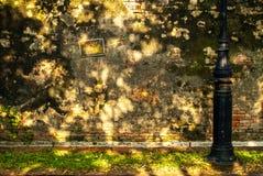 在墙壁上的没有街道画在颜色故宫 库存图片