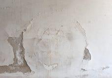 在墙壁上的潮湿的湿气 库存照片