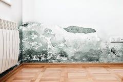 在墙壁上的潮湿造成的损伤在现代房子 库存图片