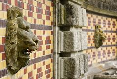 在墙壁上的狮子壁画。 免版税库存图片