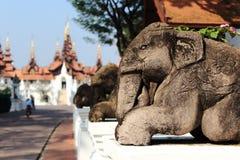 在墙壁上的石大象雕象 免版税库存照片