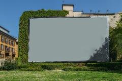 在墙壁上的空白的广告空间在草和藤旁边 库存照片