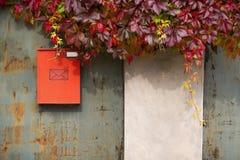 在墙壁上的红色邮箱有紫色常春藤的 图库摄影